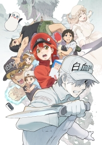 Anime: Cells at Work!! Staffel 2
