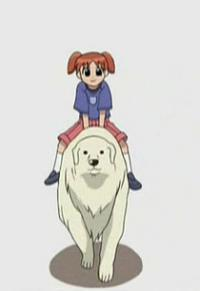Anime: Azumanga Daioh: Mini-Movie
