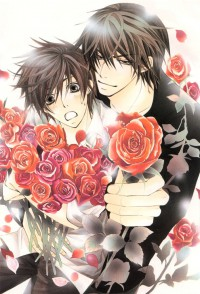 Anime: Sekai Ichi Hatsukoi: World's Greatest First Love OVA