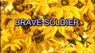 Streams: Brave Soldier