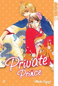Private Prince - Bd.03: Kindle Edition