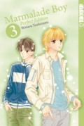 Marmalade Boy - Bd.03: Perfect Edition