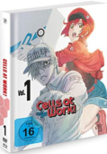 Cells at Work! - Vol.1/3: Mediabook [Blu-ray+DVD]