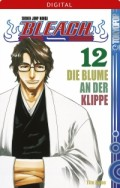 Bleach - Bd.12: Kindle Edition