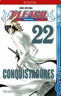 Bleach - Bd.22: Kindle Edition