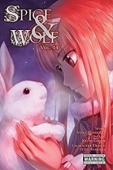 Spice & Wolf - Vol.14: Kindle Edition