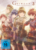Grimgar, Ashes and Illusions - Vol.3/3