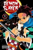 Demon Slayer: Kimetsu no Yaiba - Vol.01: Kindle Edition