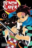 Demon Slayer: Kimetsu no Yaiba - Vol.01