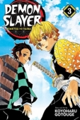 Demon Slayer: Kimetsu no Yaiba - Vol.03