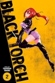 Black Torch - Vol.02: Kindle Edition