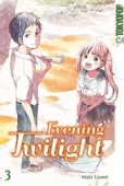 Evening Twilight - Bd.03: Kindle Edition