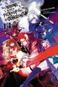 Is It Wrong to Try to Pick Up Girls in a Dungeon? - Vol.14: Kindle Edition