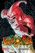 Dragon Ball Massiv - Bd. 13