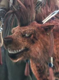 Charakter: Red XIII