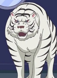 Charakter: White Tiger