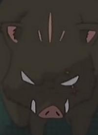 Charakter: Inoshishi