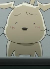 Charakter: Koinu