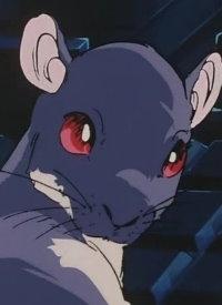 Charakter: Algernon