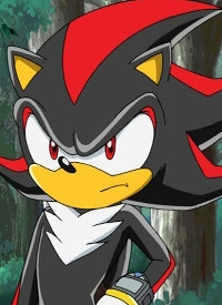 Charakter: Shadow the Hedgehog
