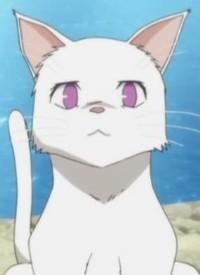 Charakter: Himari NOIHARA [Cat Form]